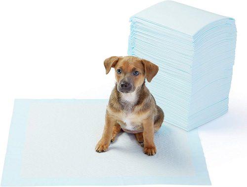 tapis d 39 entrainement pour chien kopsana